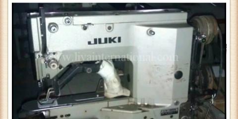 Bar Tack Machine JUKI LK-1852